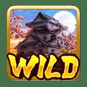 Wild  Ninja vs Samurai