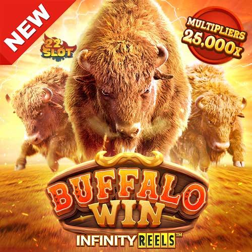 Banner-Buffalo-Win-min
