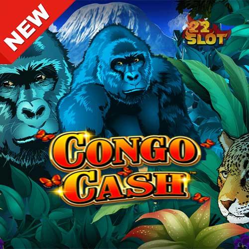 Banner-Congo-Cash-min