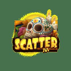 Scatter-Day-of-Dead-min
