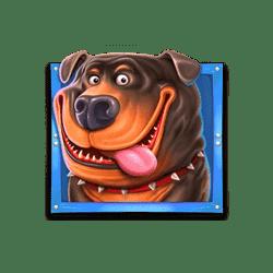 Top-The-Dog-House-min
