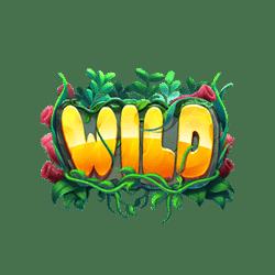 Wild-Fishin'-Reels-min