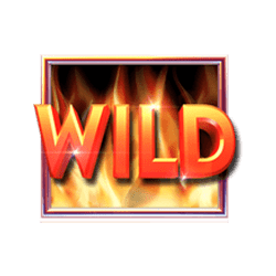 Wild-Hot-to-Burn-Hold-and-Spin-min